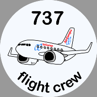 B-737 Air Europa Sticker